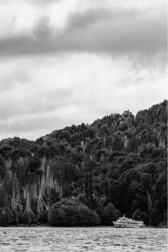 El Camino de las 10.000 Fotografías (117)