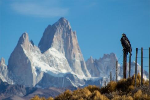 El Camino de las 10.000 Fotografías (149)