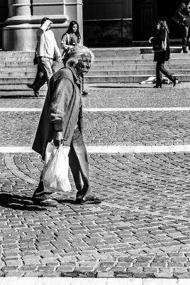 El Camino de las 10.000 Fotografías (104)
