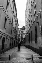 El Camino de las 10.000 Fotografías (211)