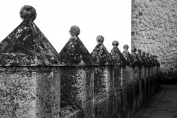El Camino de las 10.000 Fotografías (248)