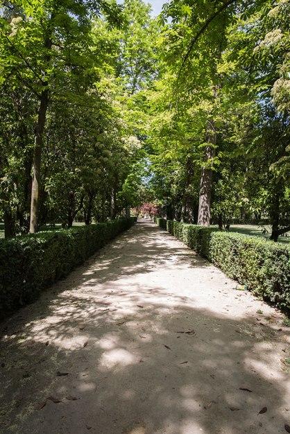 Aranjuez-(17-de-95)