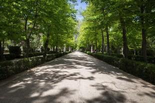 El Camino de las 10.000 Fotografías (381)