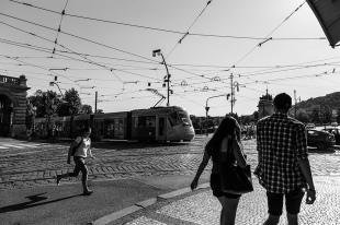 El Camino de las 10.000 Fotografías (679)