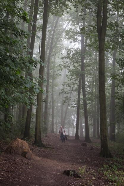 El Camino de las 10.000 Fotografías (685)