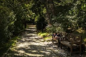 El Camino de las 10.000 Fotografías (613)