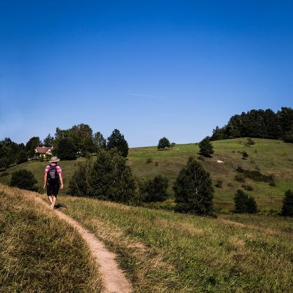 El Camino de las 10.000 Fotografías (718)
