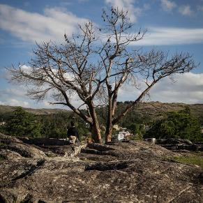 El Camino de las 10.000 Fotografías (746)